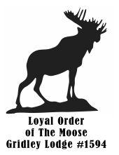gridley moose